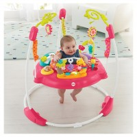 Jumperoo Pétalas Rosas - Fisher Price