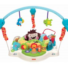 Jumperoo Planeta Precioso- Fisher Price